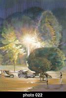 Настенный гибкий пленочный инфракрасный обогреватель картина KET 220 В 022