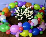 Гирлянда с воздушных шариков (радужная) /маленькие шарики/, фото 3