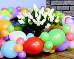 Гирлянда с воздушных шариков (радужная) /маленькие шарики/, фото 5