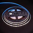 Светодиодная лента AVT PROFESSIONAL SMD 2835 (120 LED/м), холодный белый, IP20, 5мм, 12В - бобины от 5 метров, фото 2