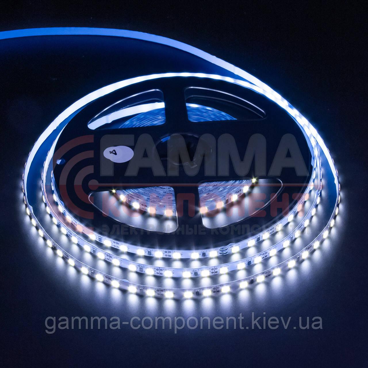 Светодиодная лента AVT PROFESSIONAL SMD 2835 (120 LED/м), холодный белый, IP20, 5мм, 12В - бобины от 5 метров