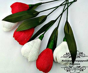 Тюльпан з цукеркою Раффаелло .