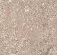 3232 Marmoleum Real - Натуральный линолеум (2,5 мм)