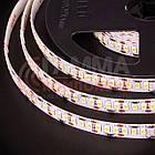 Светодиодная лента AVT PROFESSIONAL SMD 3014 (204 LED/м), IP20, 12В - бобины от 5 метров, фото 3
