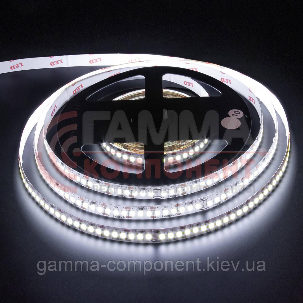 Светодиодная лента AVT PROFESSIONAL SMD 3014 (204 LED/м), IP20, 12В - бобины от 5 метров