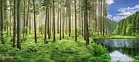 """Бесшовные флизелиновые фотообои """"Лес"""""""