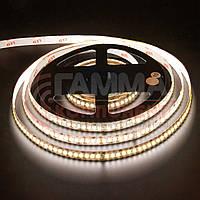 Светодиодная лента AVT PROFESSIONAL SMD 3014 (204 LED/м), теплый белый, IP20, 12В