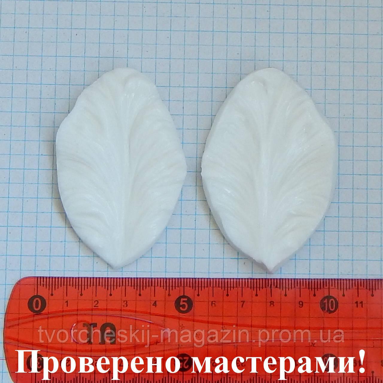 """Вайнер """"Тюльпан попугайный"""", 7х4,5 см"""