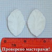 """Вайнер """"Тюльпан попугайный"""", 7х4,5 см, фото 1"""