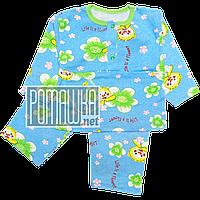 Пижама для новорожденного тонкая р. 92-98 ткань КУЛИР 100% тонкий хлопок ТМ Авекс 3186 Голубой