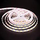 Светодиодная лента MOTOKO PREMIUM SMD 2835 (60 LED/м), теплый белый, IP20, 12В - бобины от 5 метров, фото 2