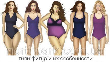 Типы фигуры женщин