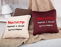 Подушка подарочная коллегам и друзьям «Магистр черной и белой бухгалтерии» флок, фото 1