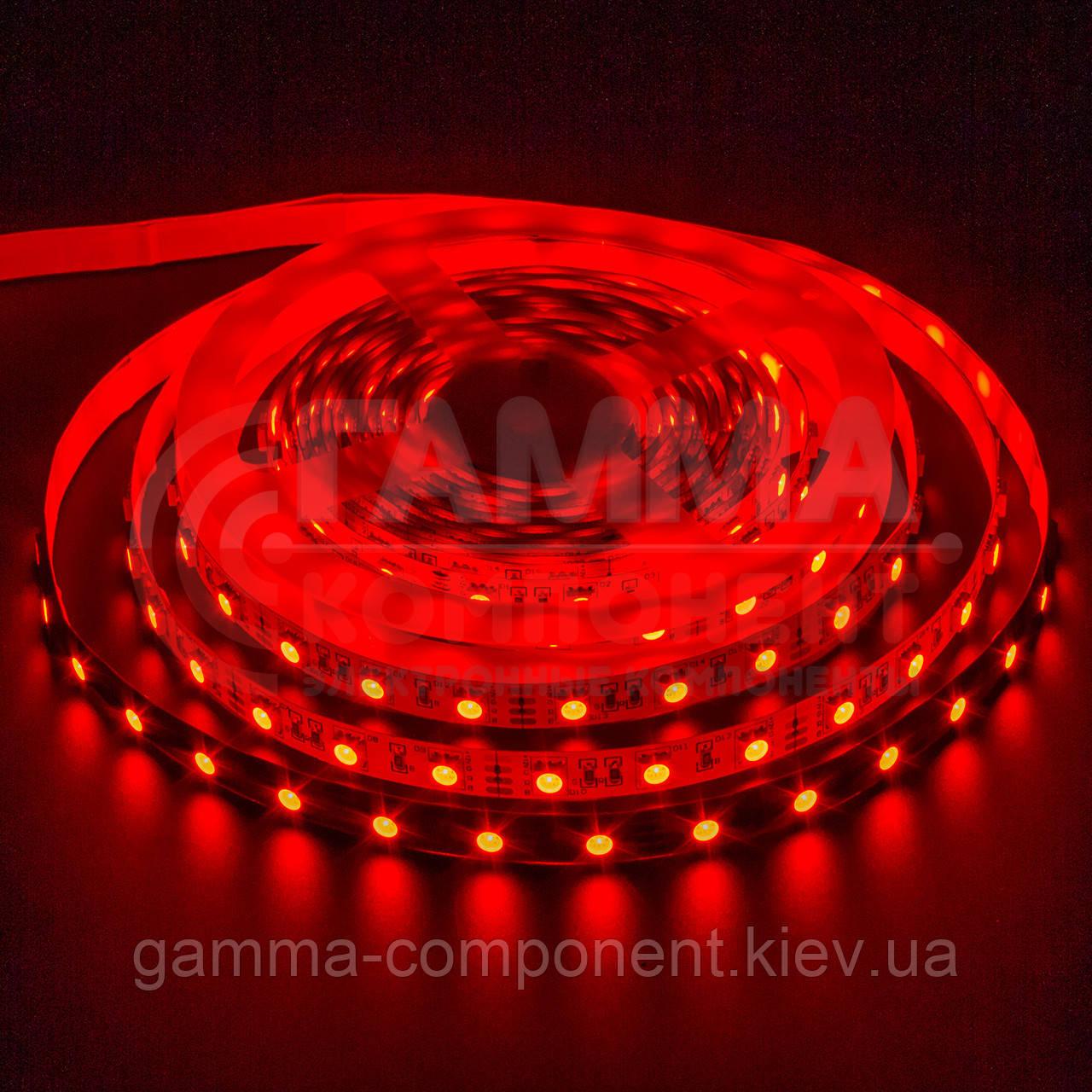 Светодиодная лента MOTOKO PREMIUM SMD 5050 (30 LED/м), красный ,IP20, 12В - бобины от 5 метров