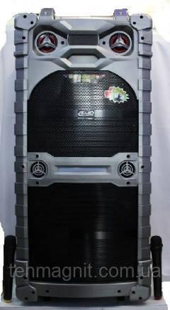 Колонка аккумуляторная, комбоусилитель, большая акустика USB/FM/Bluetooth с радиомикрофонами Trolley Speaker