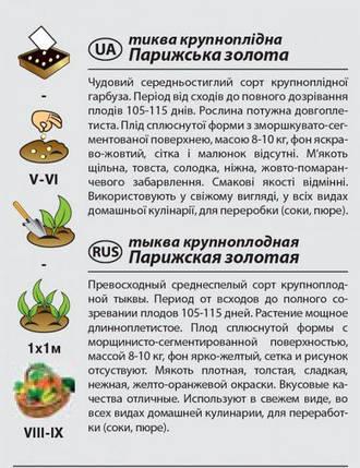 """Насіння гарбуза ранньої """"Паризька золота"""" (2 р) від Agromaksi seeds, фото 2"""