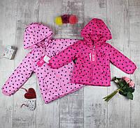 Курточка дитяча для дівчинки на весну J-76, фото 1