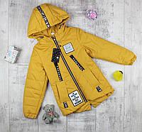 """Курточки детские на весну для девочки """"Австрия"""", фото 1"""
