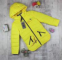 Куртки детские на осень для девочки HL 212, фото 1