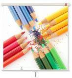 Экран для проектора 200x200cm 1:1 Avtek 1EVS04