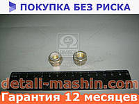 Гайка М10 самоконтр. маятника ВАЗ 2101, ФВ КАМАЗ (Белебей) 1/25745/11