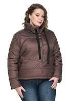 Женская куртка осень-весна Верона мокко (50-58), фото 1