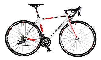 Велосипед CYCLONE FRC 81 2019 белый