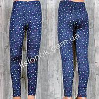Тонкие хлопковые лосины под джинс для девочек на лето отличного качества, рисунок звездочки, фото 1