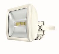 Светодиодный прожектор 10 Вт theLeda E10L WH th 1020711