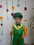 Костюм Мистер Жаб, лягушонок, жабення прокат, фото 3