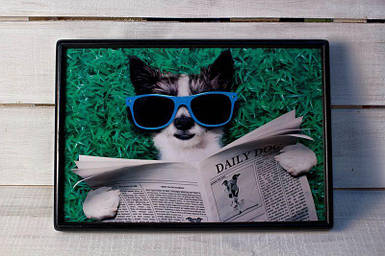 Поднос на подушке BST 46*32 коричневый собака в очках
