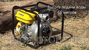 Бензиновая мотопомпа SADKO WP-5065P, фото 2