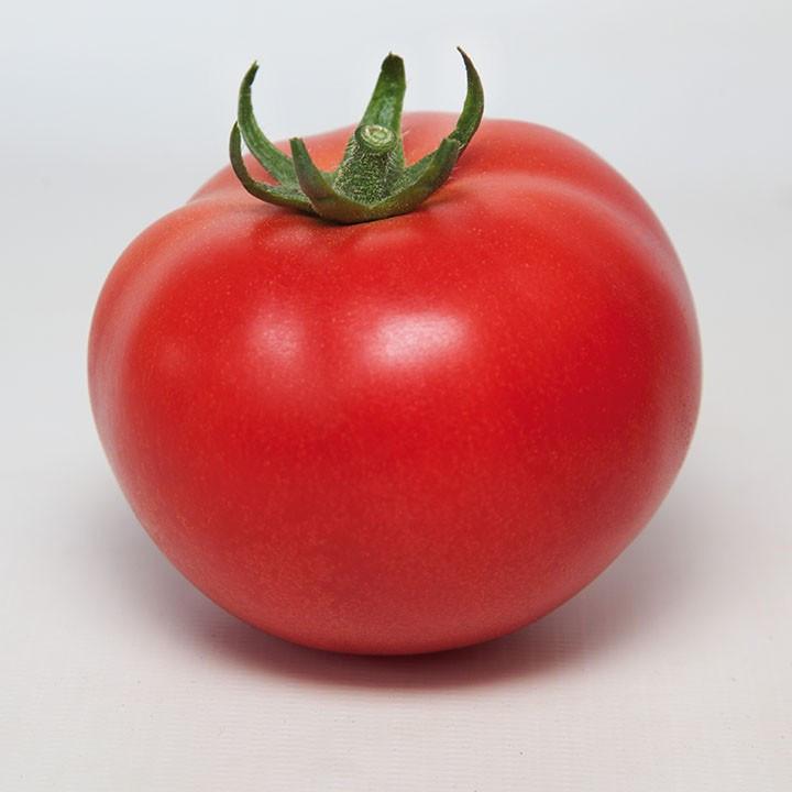 КС 21 F1 (100шт) - Насіння томату індетермінантного, Kitano Seeds