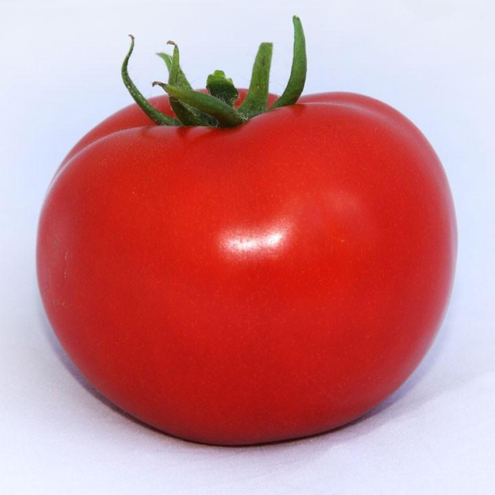 ХІТОМАКС F1 (1000шт) - Насіння томату індетермінантного, Kitano Seeds
