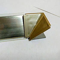 Угол Внутренний на плинтус бронзовый треугольный