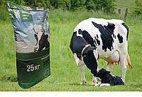 Концентрат для лактуючих корів Концентат (БМВД) 10%  (25кг)  KOUDIJS Каудайс (™ D-МІКС) Україна-Голландія