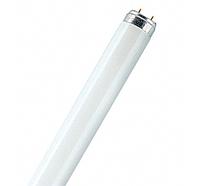 Люминисцентная лампа Т-8 600мм трубчатая Philips 18w