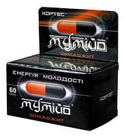Мумиё-Шиладжит  - энергия молодости.