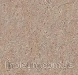 5803 Marmoleum Terra - Натуральный линолеум (2,5 мм)