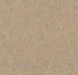 5804 Marmoleum Terra - Натуральный линолеум (2,5 мм)
