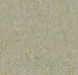 5801 Marmoleum Terra - Натуральный линолеум (2,5 мм)