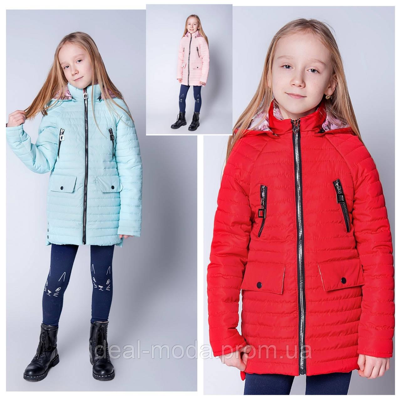 6ddaa0eda43 Детские куртки оптом весна-осень Тая 134-152р  продажа