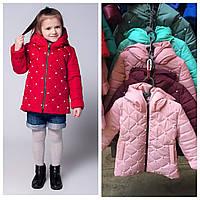 Детские куртки оптом весна-осень Мария 116-134р 44c8735204a99