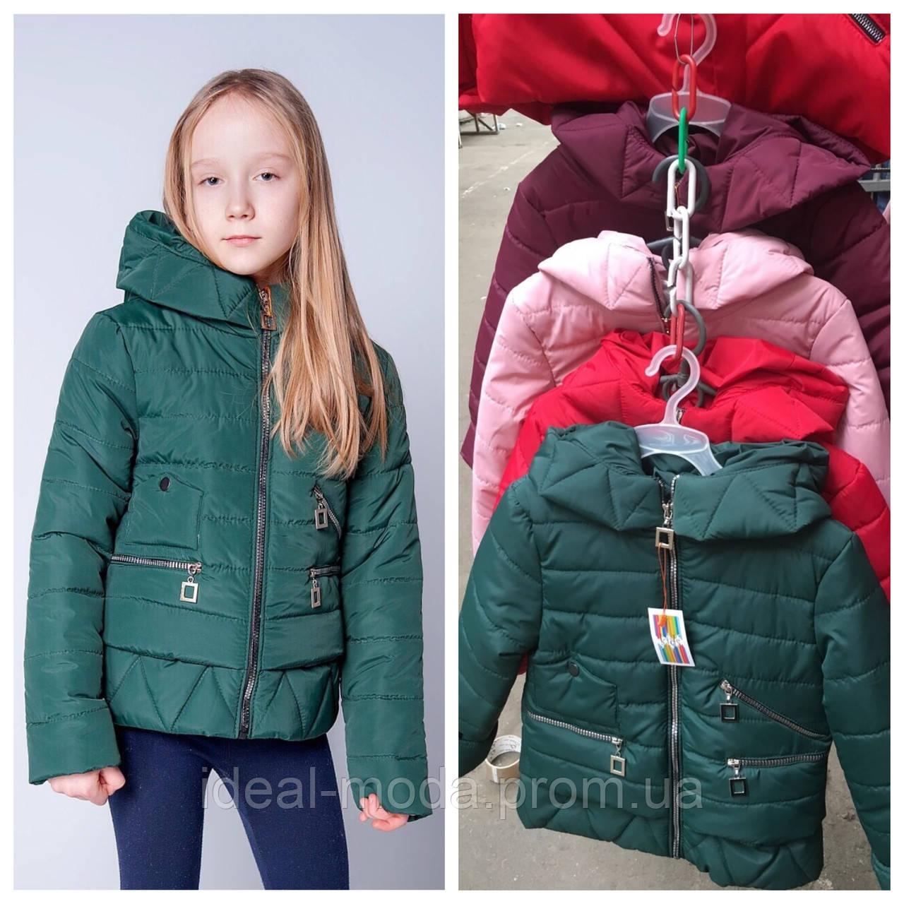 6682a492389 Детские куртки оптом весна-осень Сара 134-152р  продажа