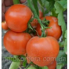 Ріксос F1 / RIXOS F1 томат червоний кущовий 500 нас, Solare Sementi (Італія)