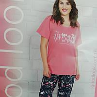 Пижама женская футболка и бриджи на большой размер. c612752607d3e