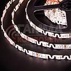 Адресна світлодіодна стрічка (змійка) SMD 5050 WS2812B (48 LED/m), IP20, 5B - бобіни від 5 метрів, фото 3