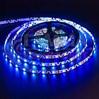 Адресна світлодіодна стрічка (змійка) SMD 5050 WS2812B (48 LED/m), IP20, 5B - бобіни від 5 метрів, фото 4