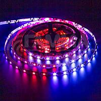 Адресная светодиодная лента (змейка) SMD 5050 WS2812B (48 LED/m), IP20, 5B - бобины от 5 метров