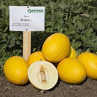 Семена дыни Агаси F1, Kitano 1 000 семян | профессиональные, фото 1